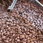 コーヒー生豆の素顔